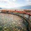 PT Aquafarm dan PT Suri Tani Pemuka Diadukan ke Polda Sumut