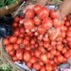Dibalut Debu Vukanik Sinabung, Permintaan Sayuran dari Karo Menurun Drastis